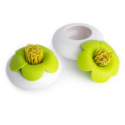 Blossom pod (White-Green) - QUALY-living with styles