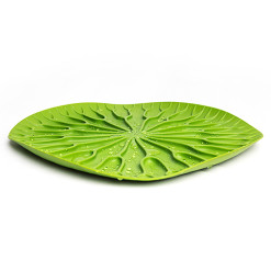 Bai bua tray (Green) by QUALY living with styles