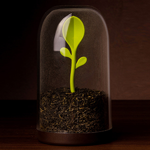 QL10205_Sprout Jar_GN