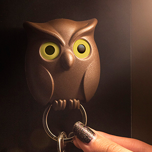 QL10195_Night Owl_BN